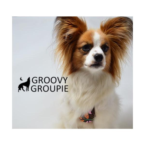 小型犬用 ハーネス  ソフト ベスト型  南国の庭&デニム  犬 胴輪 ボディハーネス 日本製  groovygroupie 10