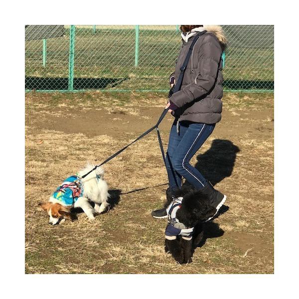 ショルダーリード 肩掛けリード 【小型犬 中型犬】 二頭用セット|groovygroupie|06