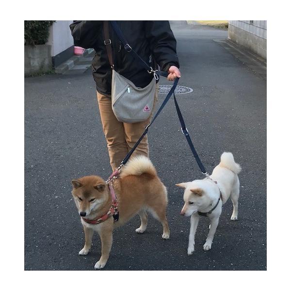 ショルダーリード 肩掛けリード 【小型犬 中型犬】 二頭用セット|groovygroupie|07