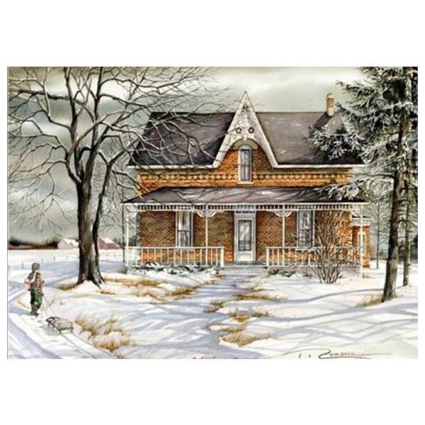 ししゅう糸 DMC糸 クロスステッチ刺繍キット 布地に図柄印刷 冬邸宅 C