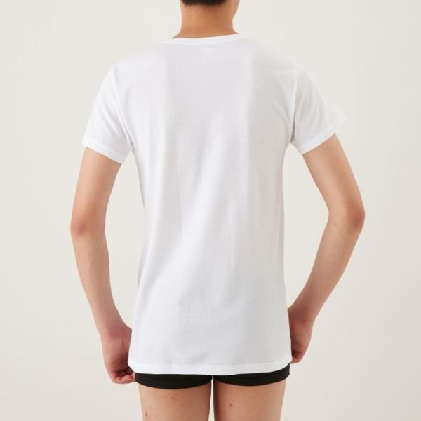綿100 GUNZE(グンゼ)/the GUNZE(ザグンゼ)/【SEASON】VネックTシャツ(V首)(紳士)/春夏シャツ/CK9315N|gunze|04