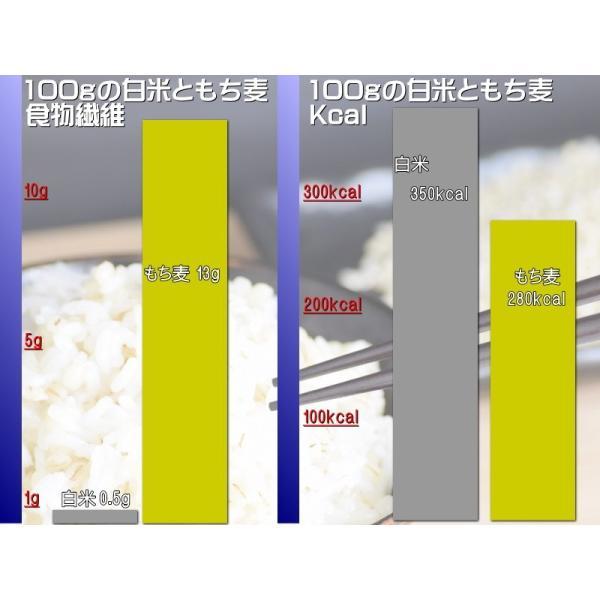 もち麦 国産 送料無料 青森県産 お試し 150g スーパーフード 新品種 はねうまもち βグルカン ダイエット もち麦ごはん ポイント消化 500 送料無|gurumedoori|08