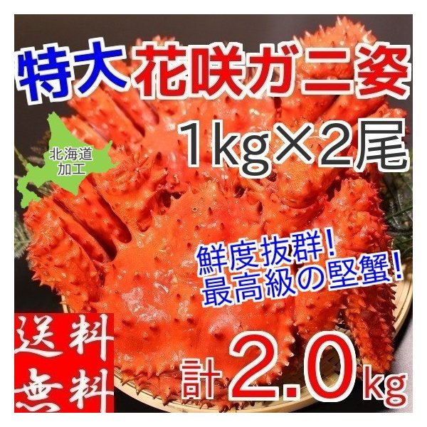 花咲ガニ 姿 ボイル 2尾で約2kg前後 特大 冷凍 北海道加工 送料無料|gurumeitiba
