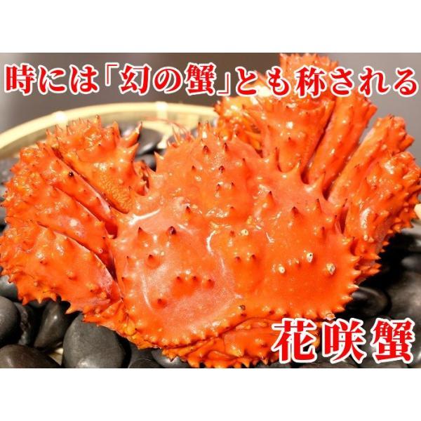 花咲ガニ 計2kg前後 (約1kg×2尾入) 特大 姿 ボイル 冷凍 北海道加工 送料無料|gurumeitiba|02