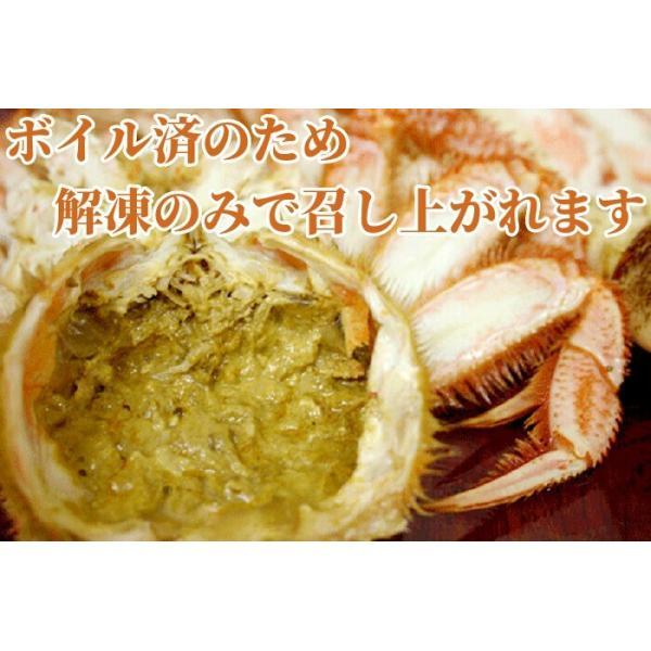 毛ガニ 計1.26kg前後 (約630g×2尾入) ボイル 冷凍 北海道産 大型 毛蟹 けがに かに カニ 送料無料|gurumeitiba|04
