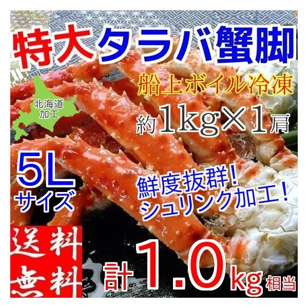 タラバガニ 足 特大 1kg 5L ギフト ボイル 冷凍 解凍のみでOK 北海道加工 良品厳選 堅蟹 肩脚 たらばがに
