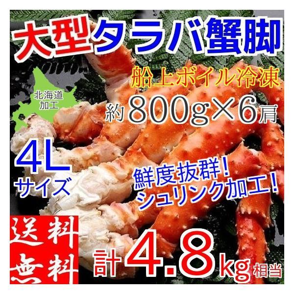 タラバガニ 足 4.8kg (800g×6肩) メガ盛り 食べ放題 ボイル 冷凍 ギフト 4L 蟹 カニ 北海道加工 堅蟹 お取り寄せ たらばがに