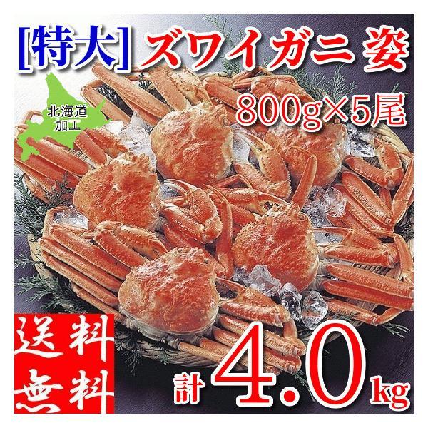 ズワイガニ 姿 特大 4kg (800g×5尾) メガ盛り ボイル 冷凍 ギフト 蟹 かに 北海道加工 カニ味噌 堅蟹 ずわい蟹