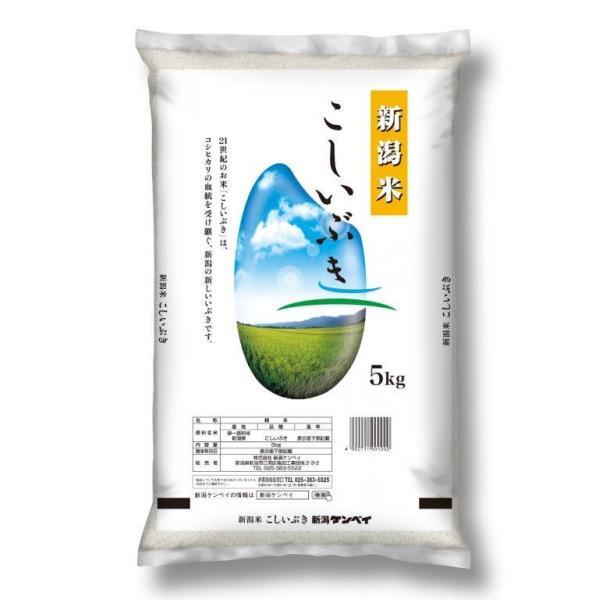 新潟県産こしいぶき 5kg×2袋 米 コメ こめ