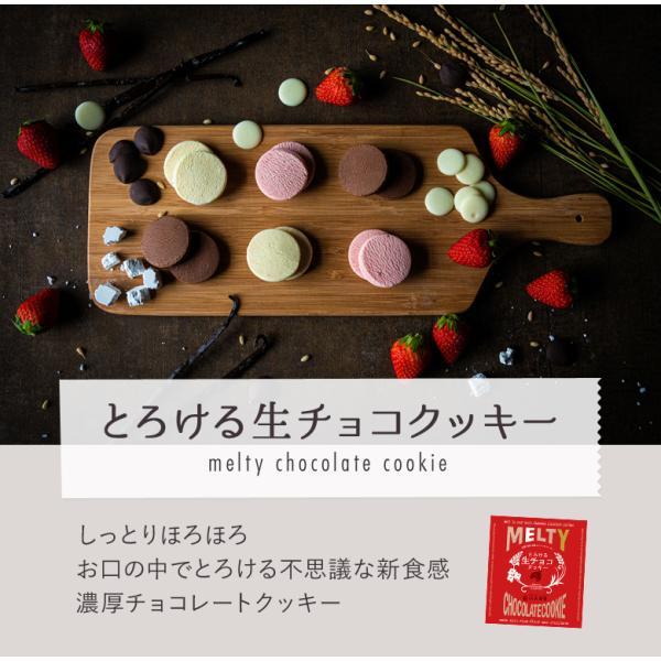 10個で送料無料 母の日ギフト 2019 チョコ とろける生チョコクッキー3個入 まとめ買い メッセージ|gyokkado|02