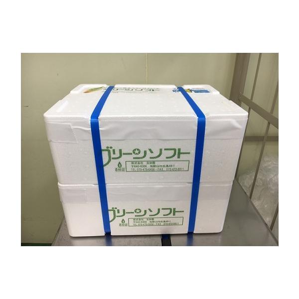 玉林園 グリーンソフト 20個入り×2箱  お抹茶入りソフトクリーム (一部離島配送不可)|gyokurin-en|02