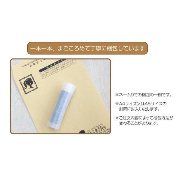 シャチハタ  印鑑 ネーム9 ねこスタンプ ネコをプリントしたネーム印|h-joshikai|10