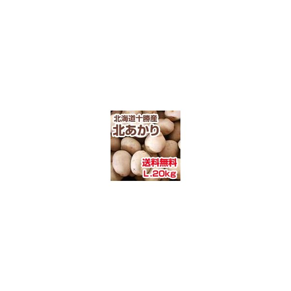 予約品 送料無料 北海道 十勝産 じゃがいも 北あかり (L・20kg) ※発送は9月上旬頃から予定