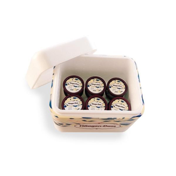 ハーゲンダッツ アイスクリーム 送料無料 ミニカップ ハーフチョイス12個セット|haagen-dazs|02
