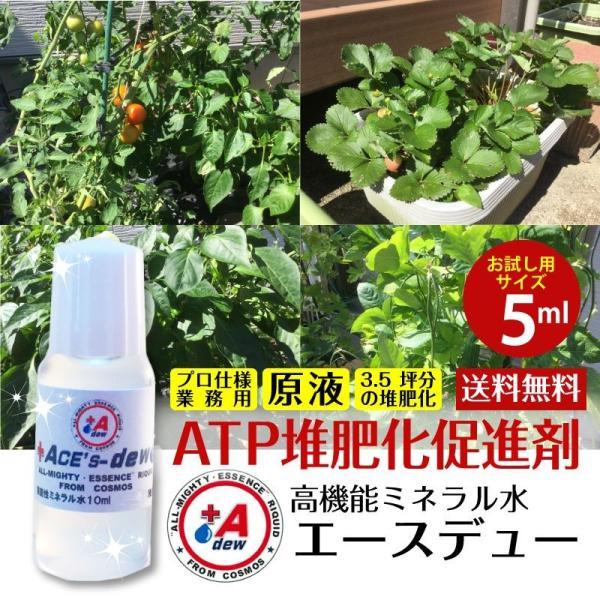 お試し用 土作り 有機 ATP 堆肥化 促進剤 家庭菜園 オーガニック 有機肥料 野菜 果物 簡単 高機能ミネラル水 糞尿100kgを肥料化 消臭化 日本製 農業資材