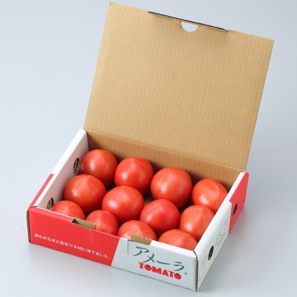 トマト アメーラ 高糖度フルーツトマト 秀品L〜2Sサイズ 1kg 静岡県産 長野県産  ギフト