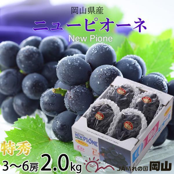ぶどう ニューピオーネ 特秀 3〜6房 2kg 岡山県産 JAおかやま 葡萄 ブドウ