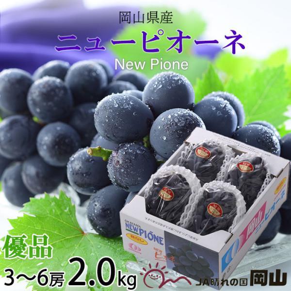 ぶどう ニューピオーネ 優品 3〜6房 2kg 岡山県産 JAおかやま 葡萄 ブドウ