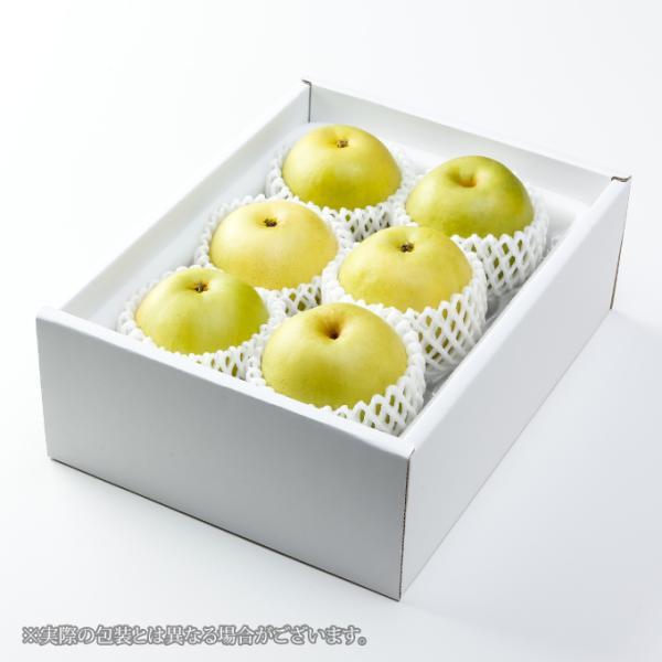 梨 20世紀梨 ちょっと訳あり 大きさおまかせ 約2kg 鳥取県産 JA鳥取中央 なし ナシ