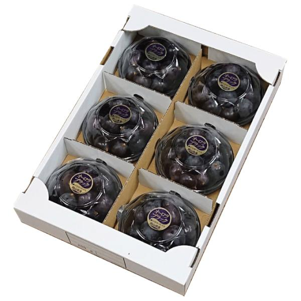 ぶどう オーロラブラック 摘み落とし 秀品200g x 6パック 岡山県産 JAおかやま 葡萄 ブドウ