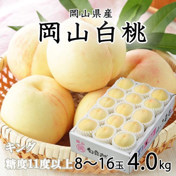 桃 岡山白桃 キング 8〜16玉 約4.0kg 岡山県産 JAおかやま もも モモ