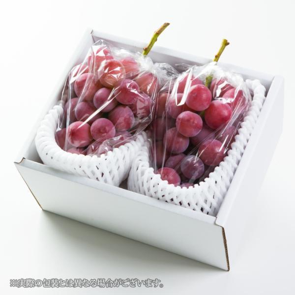 ぶどう クイーンニーナ ちょっと訳あり 約400g×2房 岡山県産 JAおかやま 葡萄 ブドウ