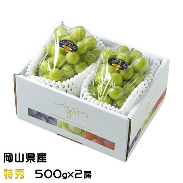 ぶどう シャインマスカット 晴王 特秀 500g×2房 岡山県産 JAおかやま 葡萄 ブドウ お中元