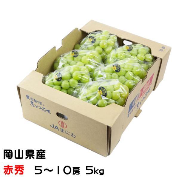 ぶどう シャインマスカット 晴王 赤秀 5〜10房 5kg 岡山県産 JAおかやま 葡萄 ブドウ お中元