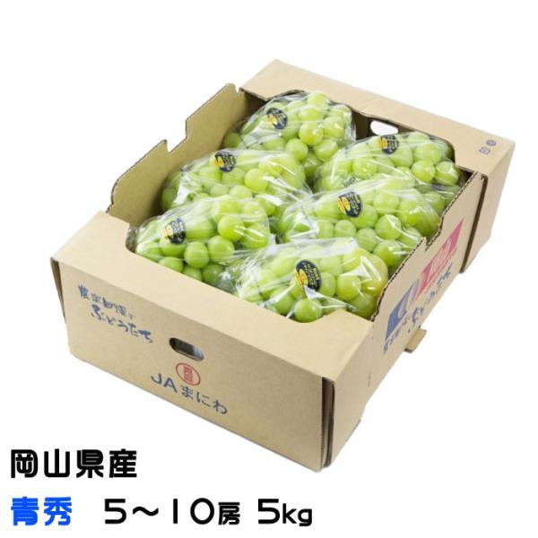 ぶどう シャインマスカット 晴王 青秀 5〜10房 5kg 岡山県産 JAおかやま 葡萄 ブドウ お中元