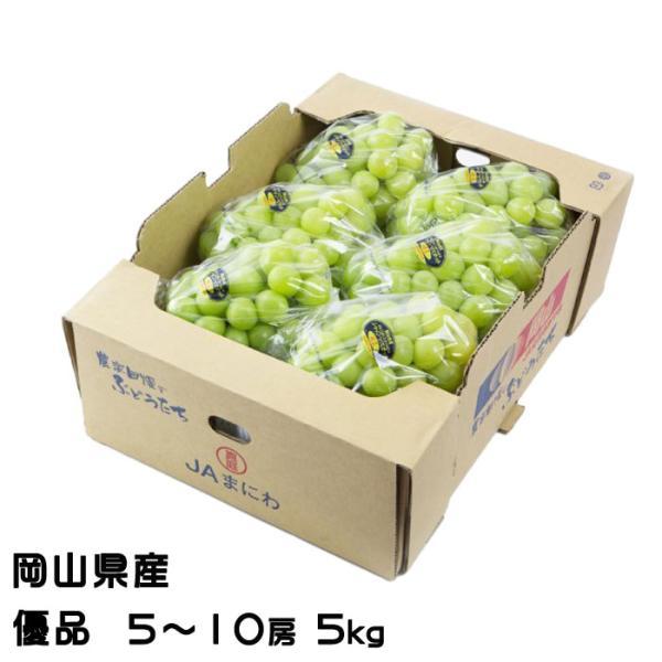ぶどう シャインマスカット 晴王 優品 5〜10房 5kg 岡山県産 JAおかやま 葡萄 ブドウ お中元
