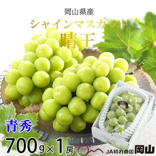 ぶどう シャインマスカット 晴王 青秀 700g×1房 岡山県産 JAおかやま 葡萄 ブドウ お中元