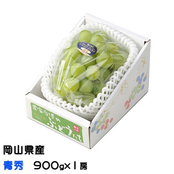 ぶどう シャインマスカット 晴王 青秀 900g×1房 岡山県産 JAおかやま 葡萄 ブドウ お中元