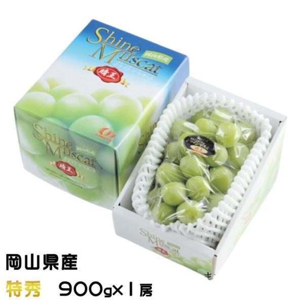 ぶどう シャインマスカット 晴王 特秀 900g×1房 岡山県産 JAおかやま 葡萄 ブドウ お中元