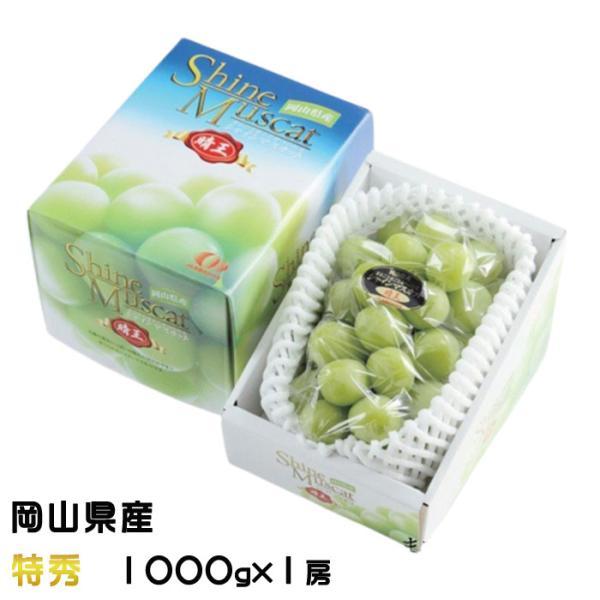 ぶどう シャインマスカット 晴王 特秀 1000g×1房 岡山県産 JAおかやま 葡萄 ブドウ お中元
