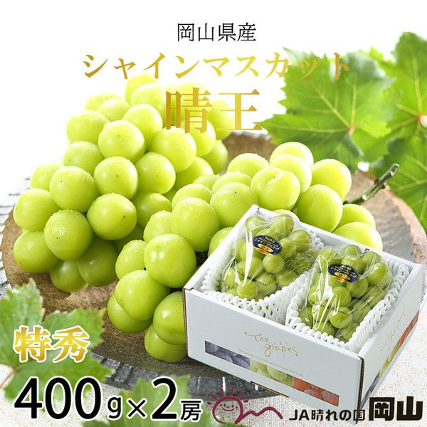 ぶどう シャインマスカット 晴王 特秀 400g×2房 岡山県産 JAおかやま 葡萄 ブドウ お中元