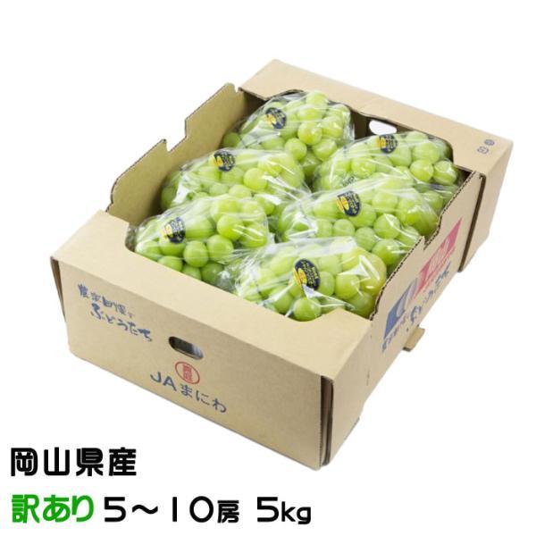 ぶどう シャインマスカット 晴王 風のいたずら ちょっと訳あり 5〜10房 5kg 岡山県産 JAおかやま 葡萄 ブドウ