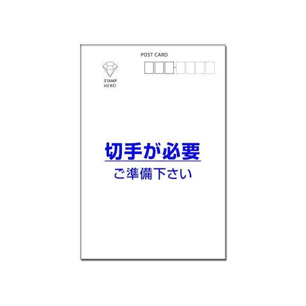 5枚  引っ越し ハガキ 引越 報告 はがき 転居 葉書  MS-95|hagaki|02