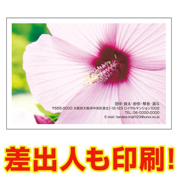 差出人印刷込み 官製30枚  多目的 絵はがき 写真 ポストカード 絵葉書 住所 印刷 MUSF-08