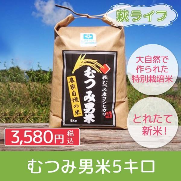 お米 5kg 山口県萩市産コシヒカリ むつみ男米|hagi-life