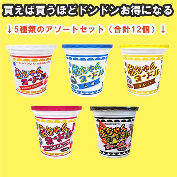 徳島製粉金ちゃんヌードル5種類アソートセット(計12個)(醤油味・しお味・カレー味・しょうゆ豚骨味・辛ラー油味) 重量5kg c