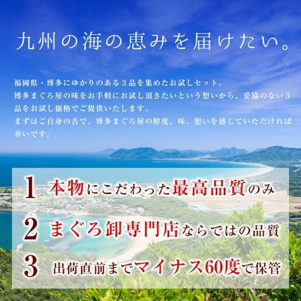 まぐろお試しセット 本まぐろ ねぎとろ まぐろ|hakatamaguroya|02