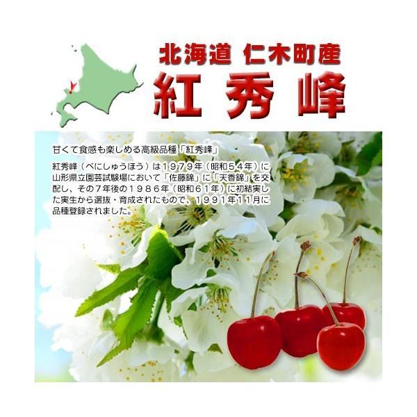 予約受付中 さくらんぼ 紅秀峰 500g  北海道 仁木町産