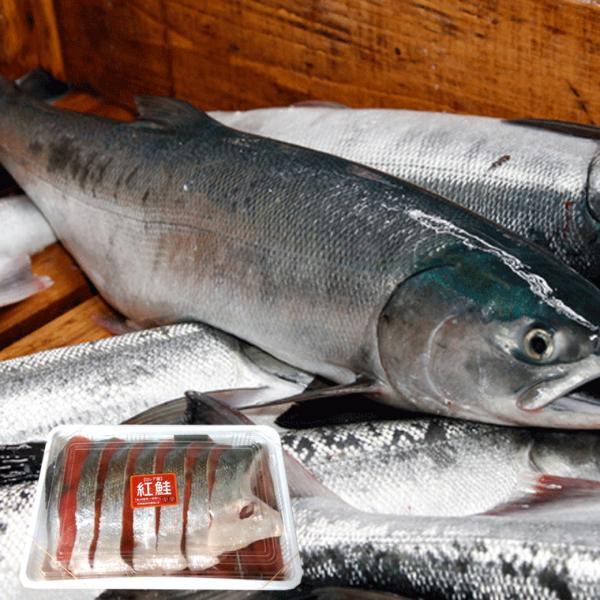 お歳暮 ギフト 鮭 切り身 サケ 半身) 紅鮭(ベニサケ)半身 切り身パック 1.8kg(900g詰め×2ヶ) (一切れ約80g×22切れ前後)頭、尾ナシ(お歳暮|hakodate-e-kombu|03