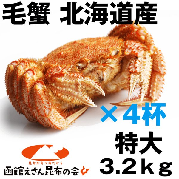 毛ガニ 特大4尾 送料無料 北海道産 毛ガニ 3.2kg強(特大800g×4尾) 毛ガニ ボイル冷凍 毛蟹 レシピ付き お歳暮 訳あり無し 3kg(3キロ)以上