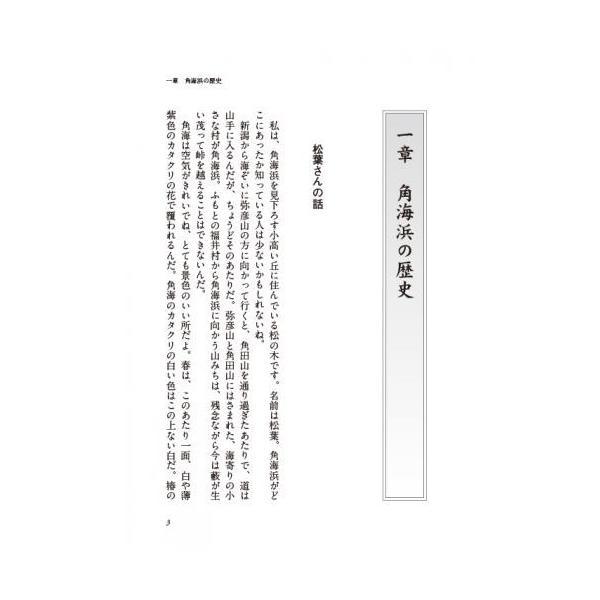 消えた角海浜  配送ポイント:3|hakushindo-store|03