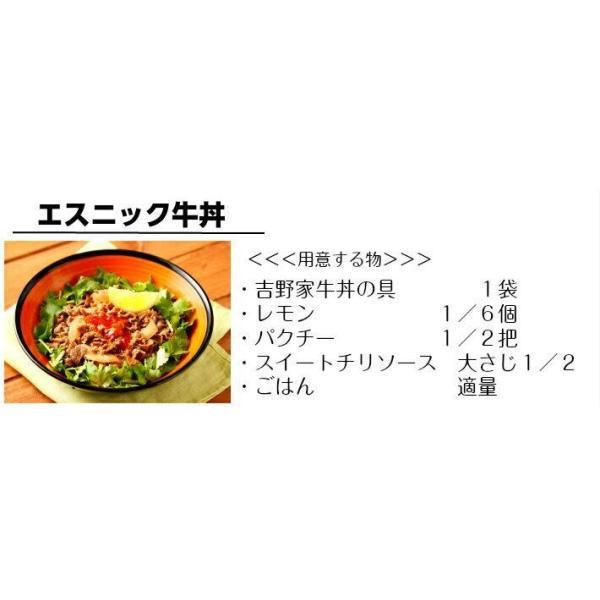 吉野家 牛丼 10袋セット|halloday|08