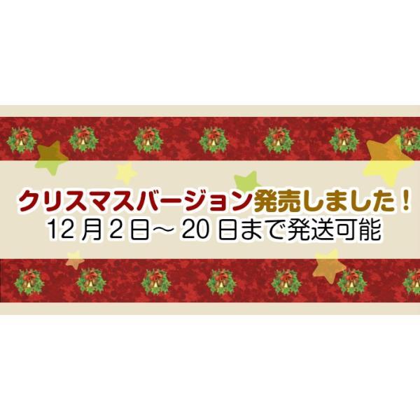 クリスマス クッキー JENNY BAKERY 香港 中国 4種ミックス ミックスバター コーヒーフラワー レーズン・オーツ ショートブレッド 焼き菓子 ジェニーベーカリー|halloday|02