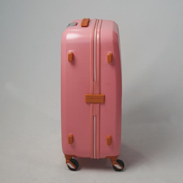 イノベーター スーツケース INV55 Mサイズ 50L 3〜4日 ファスナータイプ innovator メーカ―直送 haloaboxart 06