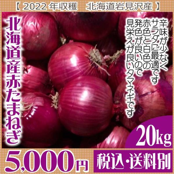 【予約受付】北海道産赤タマネギ(レッドアイII) (2021年度産)  20kg