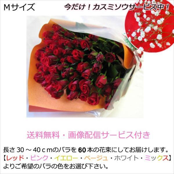 送料無料(一部地域を除く)Mサイズ産地直送 60本のバラの花束